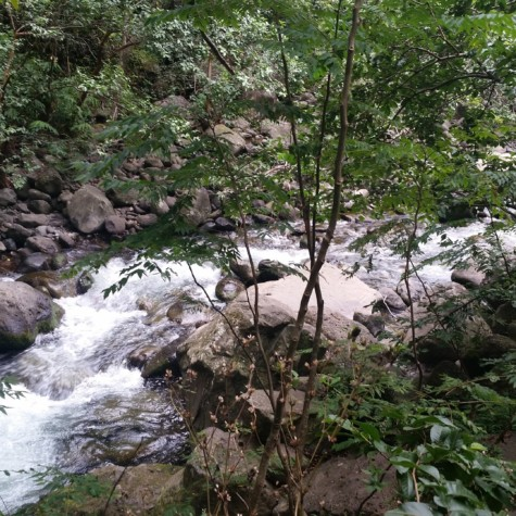 Hike in Iao Valley